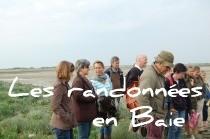 Promenades dans la Baie de Somme