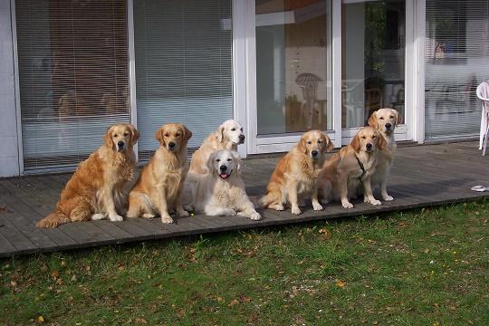 Familientreff im Urlaub '05