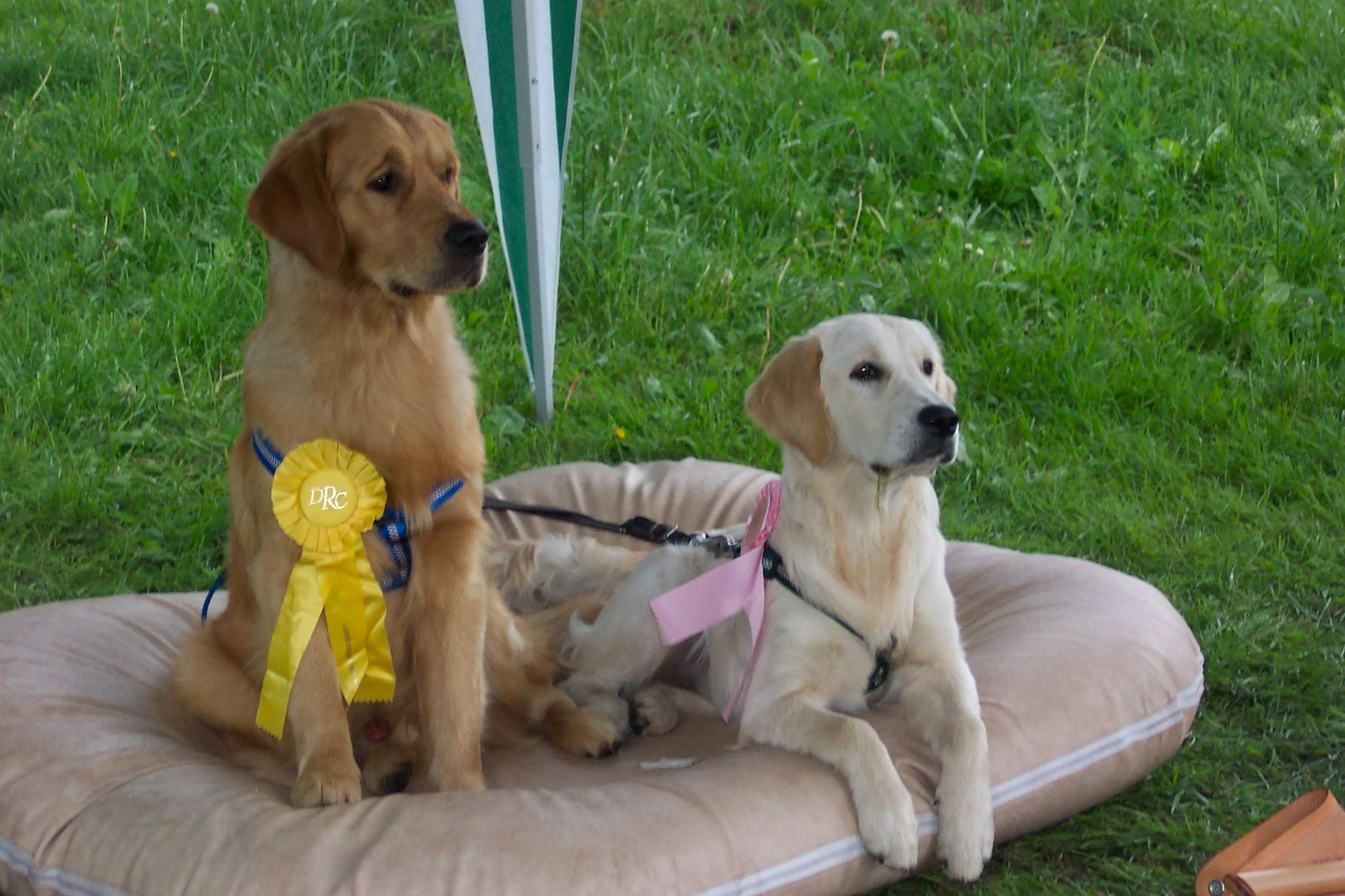 Zwei in einem Boot und stolze Schleifenträger! (Show in '07) Selwyn und Helen