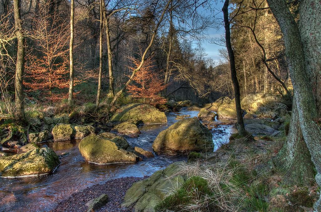 La Höegne - River Höegne (HDR).