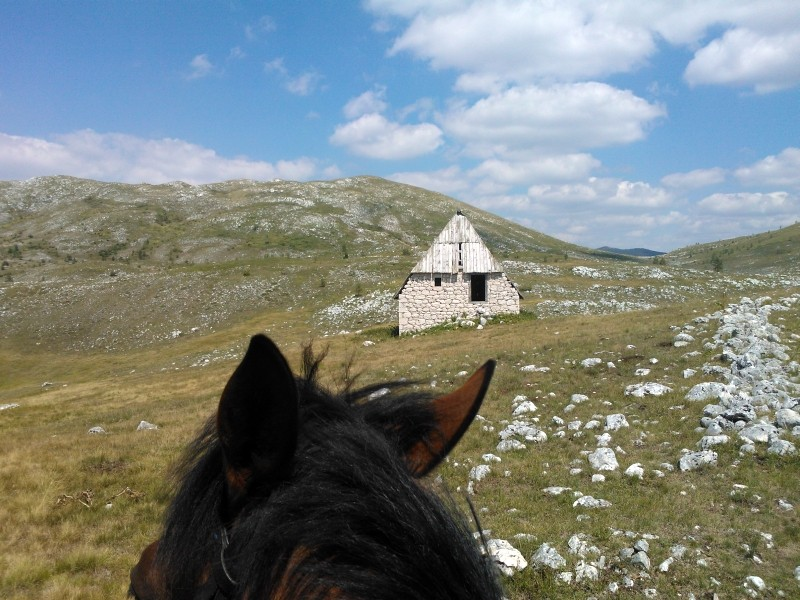 Zu Pferd unterwegs im Sinjajevina-Gebirge