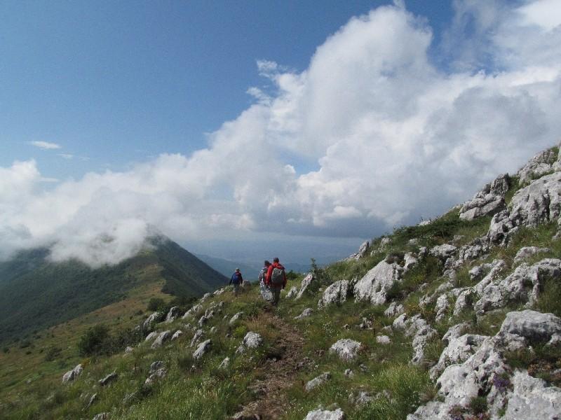 Abstieg vom Trem; Suva Planina, Serbien