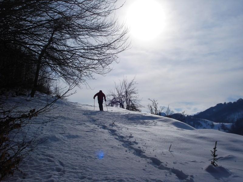 Schneeschuhwandern in der Bjelasica