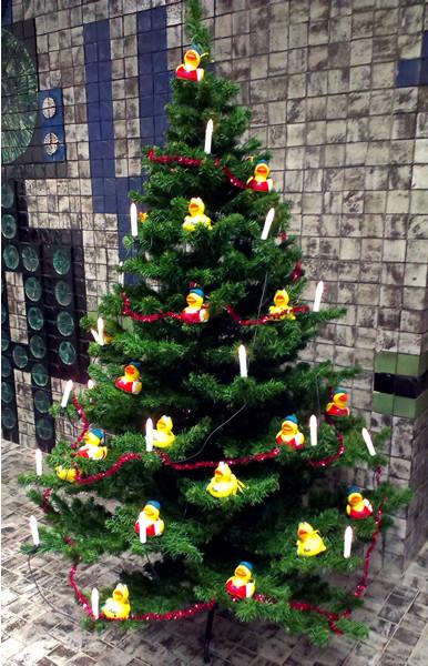 Weihnachtsbaum im Schwimmbad in Nauort