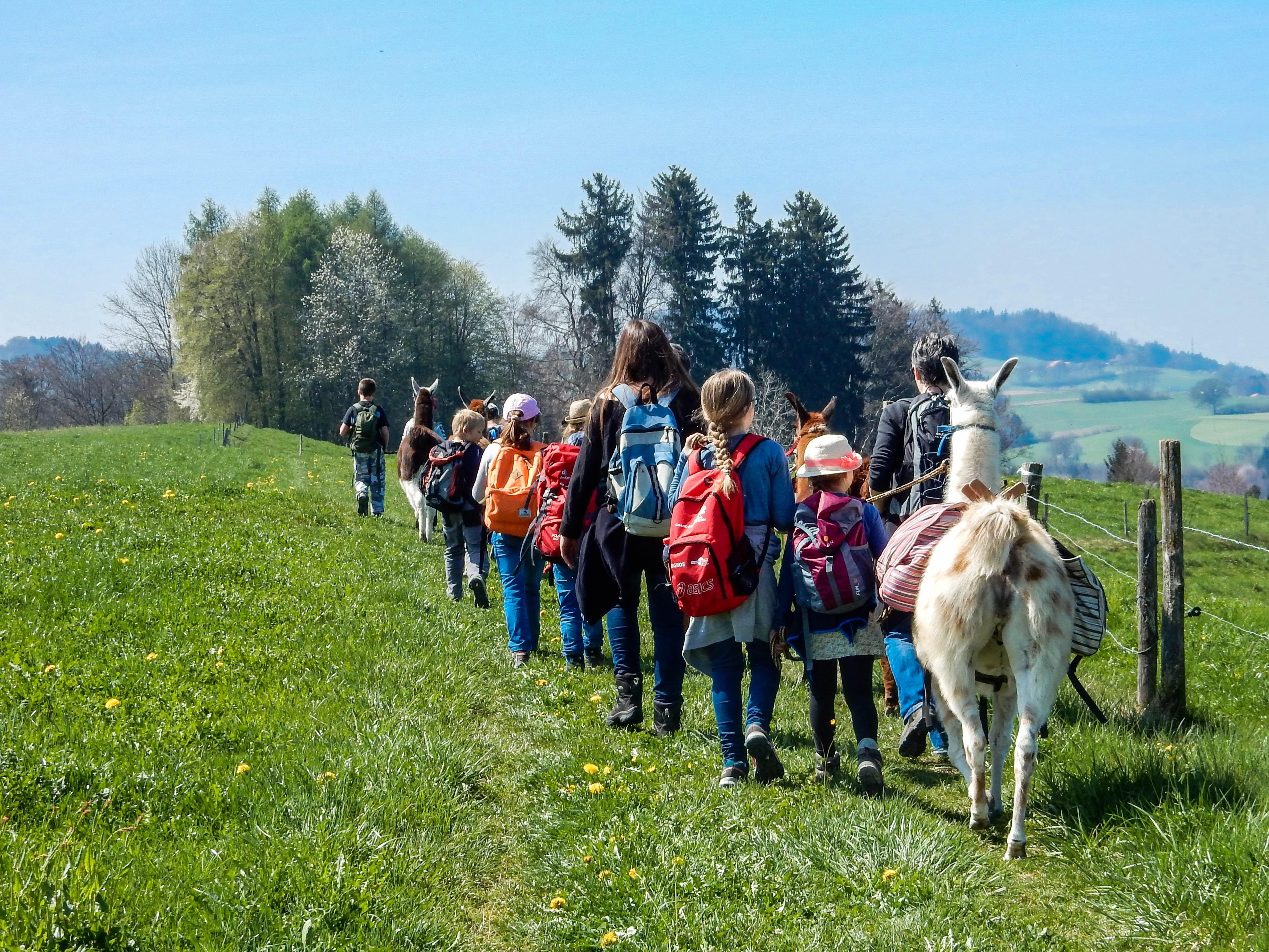 Idee: Trekk zur Schlossruine Grasburg.