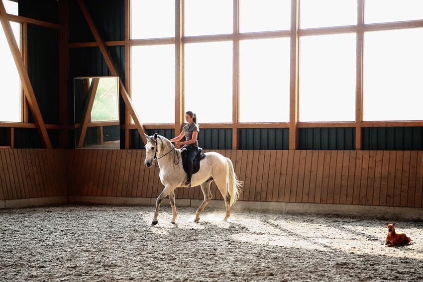 Reiten, Pferd, Trab, Legerete, Philippe Karl, Reithalle