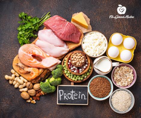 Proteine - Gut für deine Abnahme?