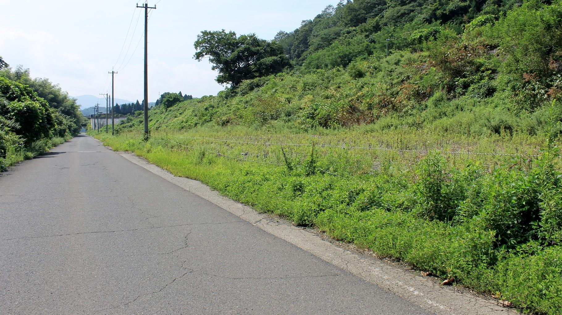 道路が本線。右部がスイッチバック待避線。
