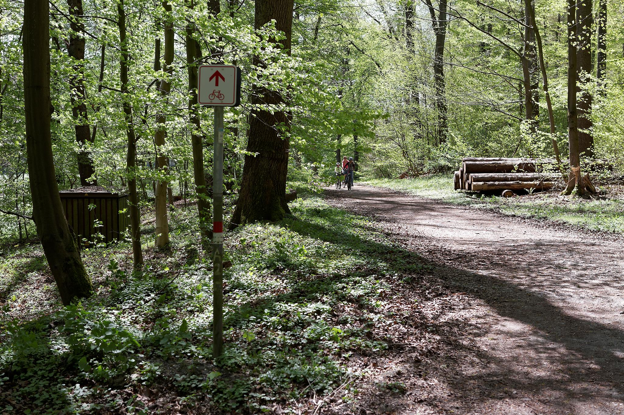 Der PB-Höhenweg per Rad oder per Pedes