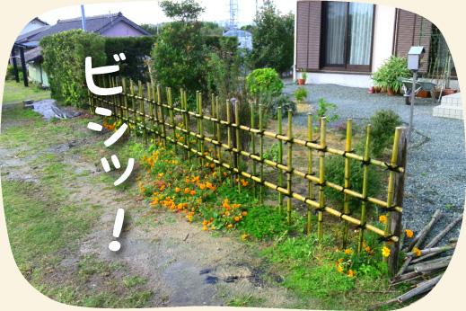 お庭の木の柵のリフォーム工事後:竹の四つ目垣に【浜松・湖西・磐田・豊橋】