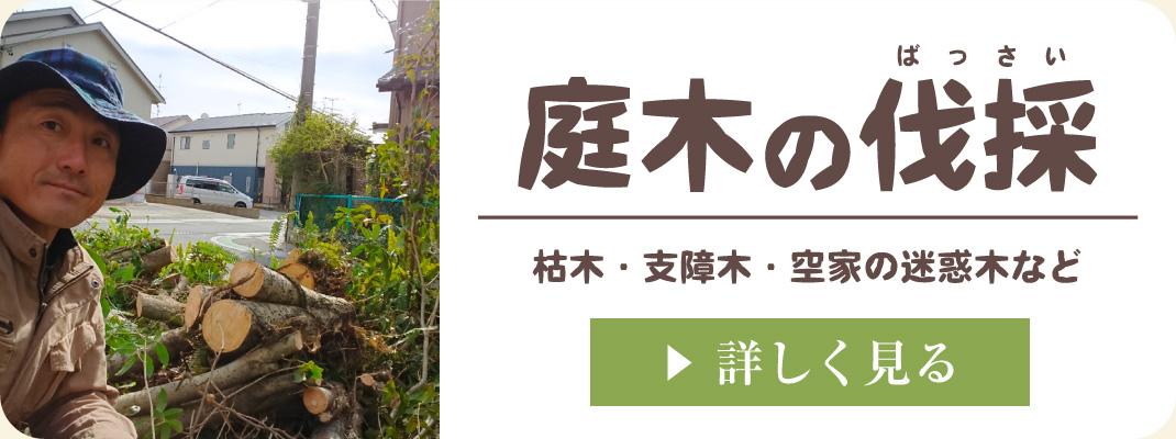 お庭の枯木や邪魔な支障木、空家の近所迷惑木を伐採・撤去・引き抜き・取り除き・処分|浜松・湖西・磐田・豊橋