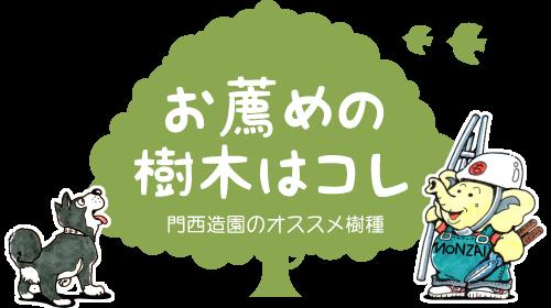 浜松・湖西・磐田・豊橋でオススメお勧めの植木・庭木・シンボルツリー