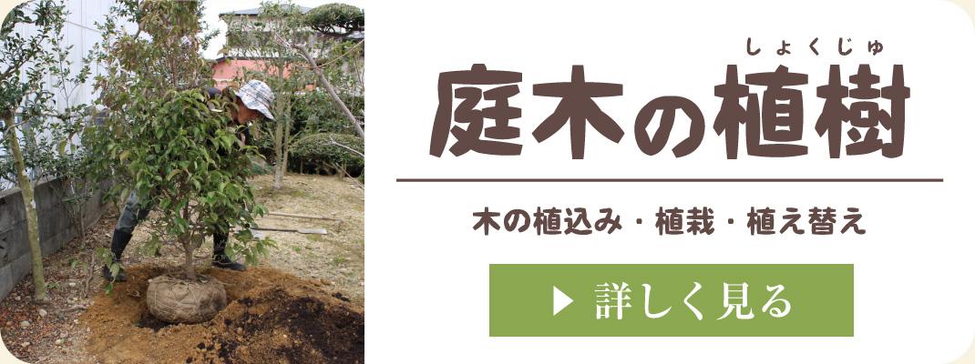 お庭への植木・シンボルツリーの植樹・植栽・植え替え|浜松・湖西・磐田・豊橋