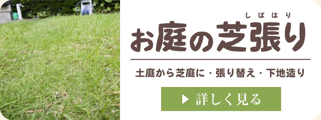 庭の芝生張り(土庭から芝生のお庭に。荒れた芝生の張り替え工事)|浜松・湖西・磐田・豊橋