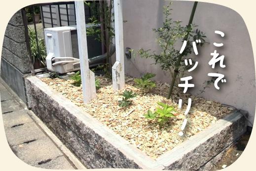 花壇のリフォーム工事後【浜松・湖西・磐田・豊橋】