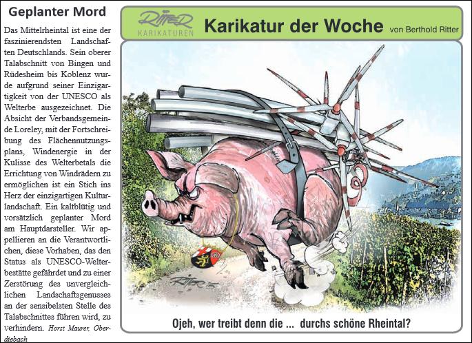 Rhein-Hunsrück-Anzeiger v. 05.08.2015 (Seite 2)