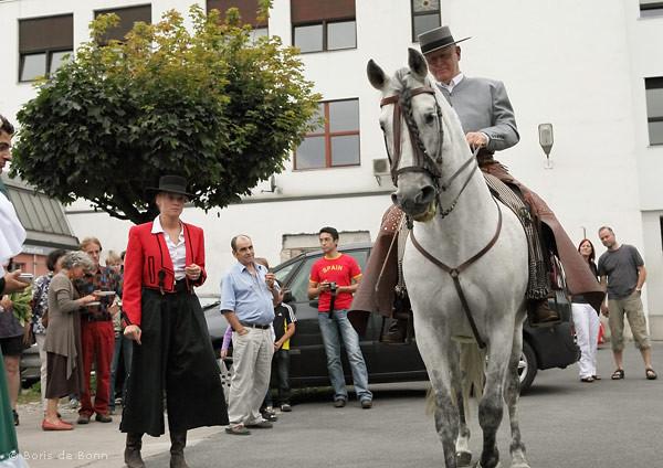 """Reiter Rudolf Neuber und sein Pferd """"Cartujano"""" (Andalusier) präsentieren andalusische Reitkunst beim Sommerfest & 10. Jubiläum des Tanzstudio La Fragua."""
