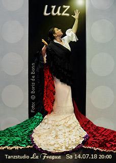 "Titelfoto zur Flamenco-Tanzaufführung ""LUZ"" mit Rosa Martínez 2018 im Tanzstudio La Fragua in Bonn / Color-Foto by Boris de Bonn"