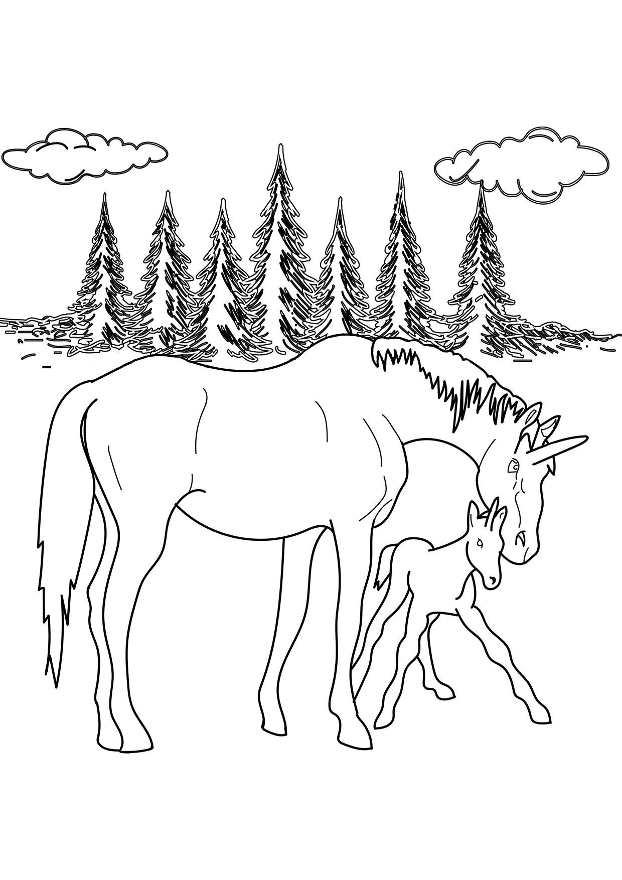 Ausmalbild Einhornfohlen