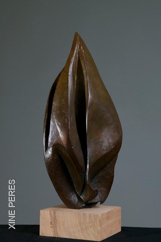 Cosse- bronze