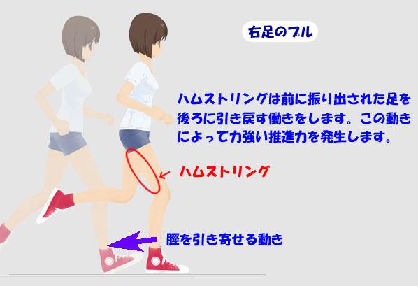 足がつる│なぜ足が動かなくなるのか?