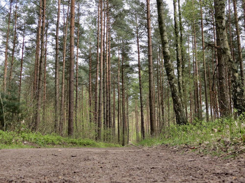 Überall Ruhe und Naturgeräusche
