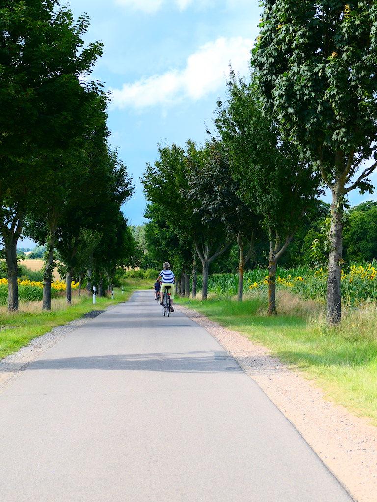 Straßen und Radweg bei Ahrensberg