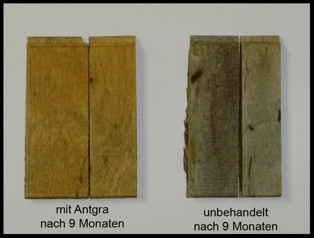 Nanoprotect Antgra – Witterungs- und Vergrauungsschutz für alle Arten von Hölzern