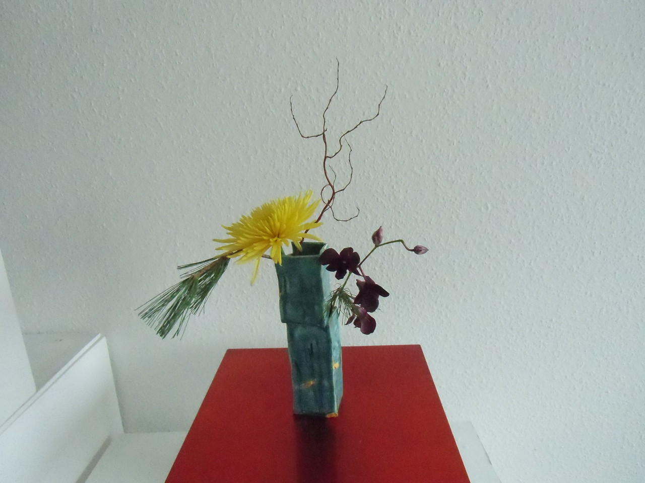 Chrysantheme und Dendrobie in Interessanter Vase