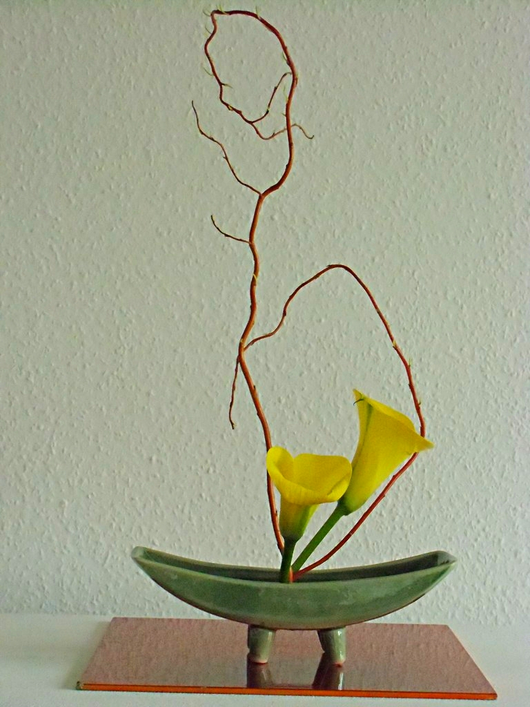 Calla mit roter Ringelweide