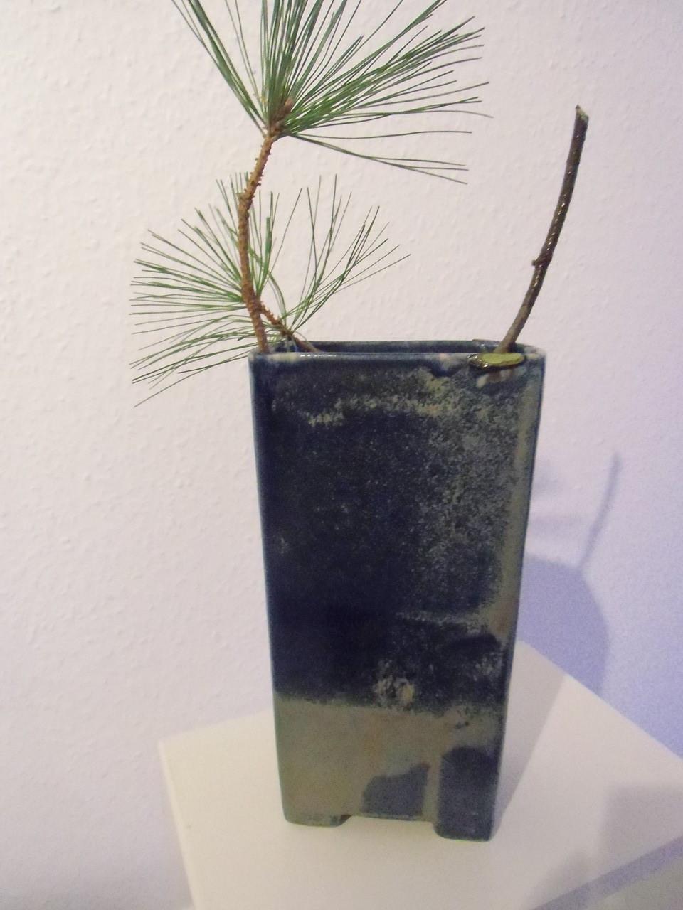 rechteckige Vase
