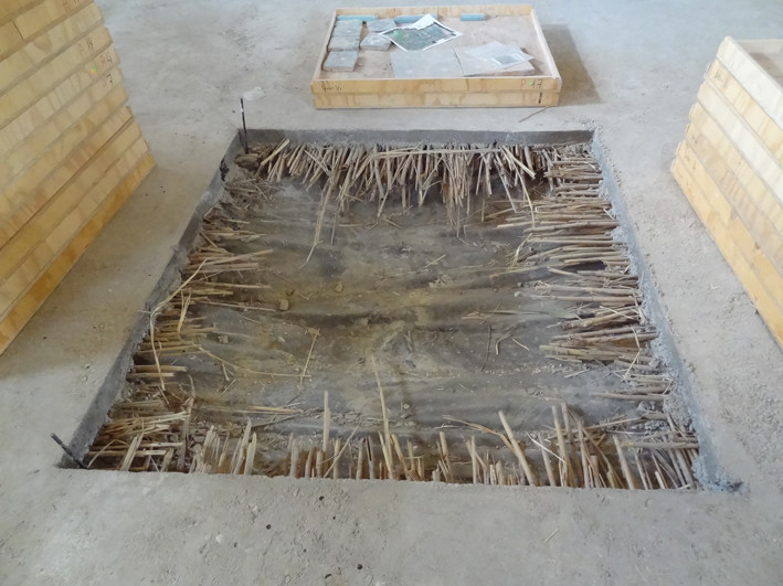 Vue du puisard avant le début des travaux. Le plastique et les joncss ont parfaitement visibles sous le béton (Socra, 2013)