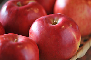 りんごジャムの原料