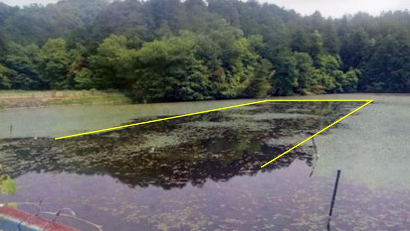 滋賀県養殖池 水草ヒシ除去: 散布1年後水草ヒシ発芽抑制