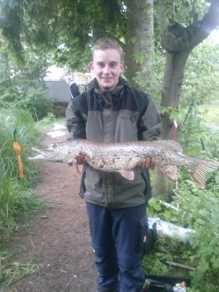 Gefangen von Markus Z. beim Lehrfischen der Jugend am Pechweiher. 90cm und 5,3 Kg
