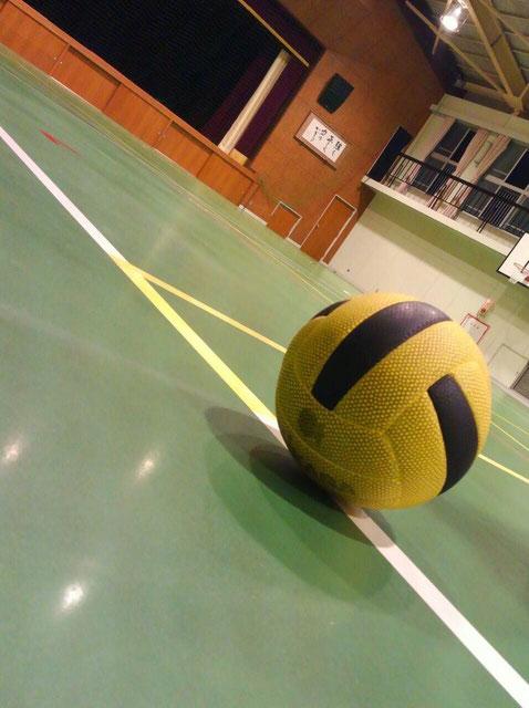 愛知県名古屋市 ドッジボール