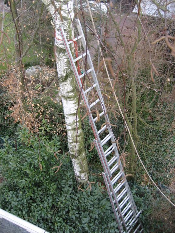 Mit der ausziehbaren Leiter kommt man schon bis in 10 m.