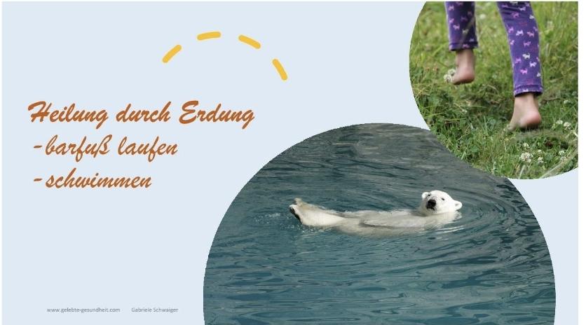 Heilung durch Erdung - barfußlaufen und schwimmen