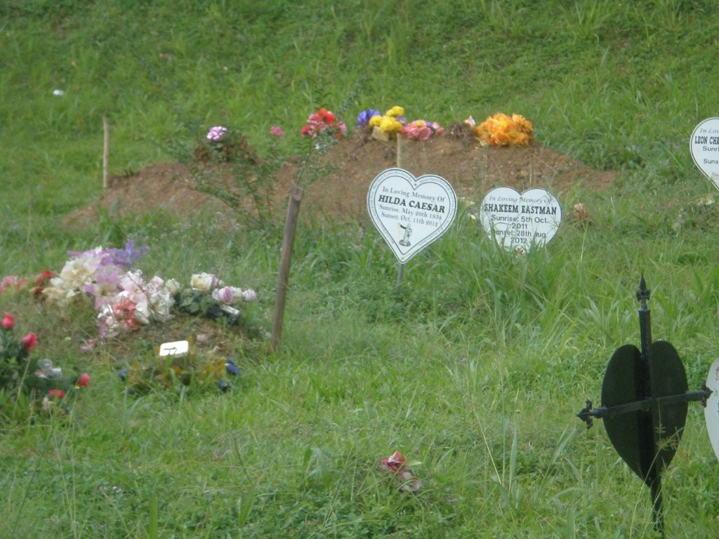 Friedhof in Charlotteville