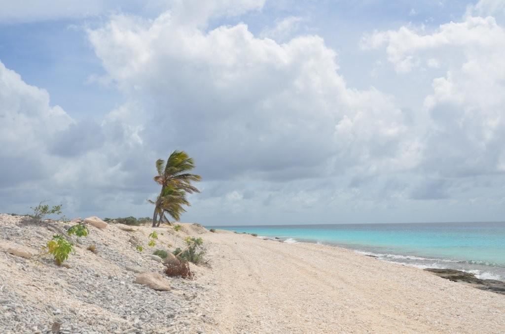 Korallenstrand im Nordwesten