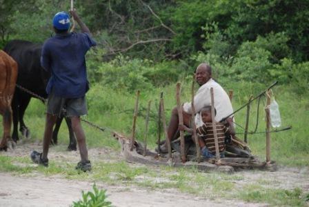 afrikanische Schlittenfahrt