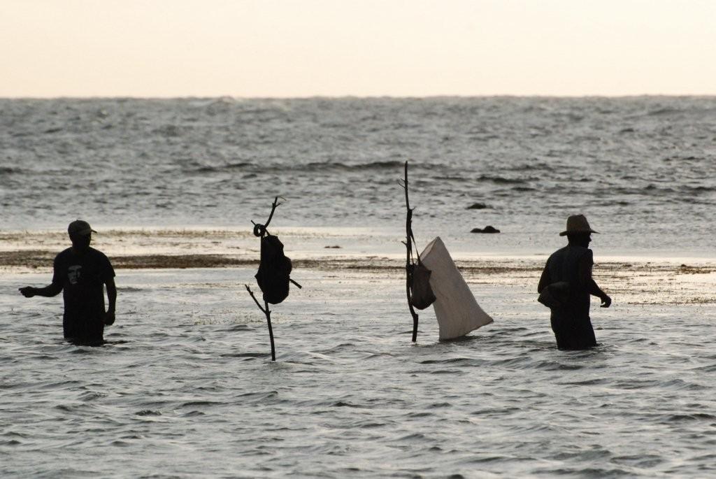 Fischer im Riff bei Chivirico