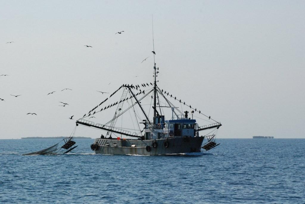 Treffpunkt Fischerflotte