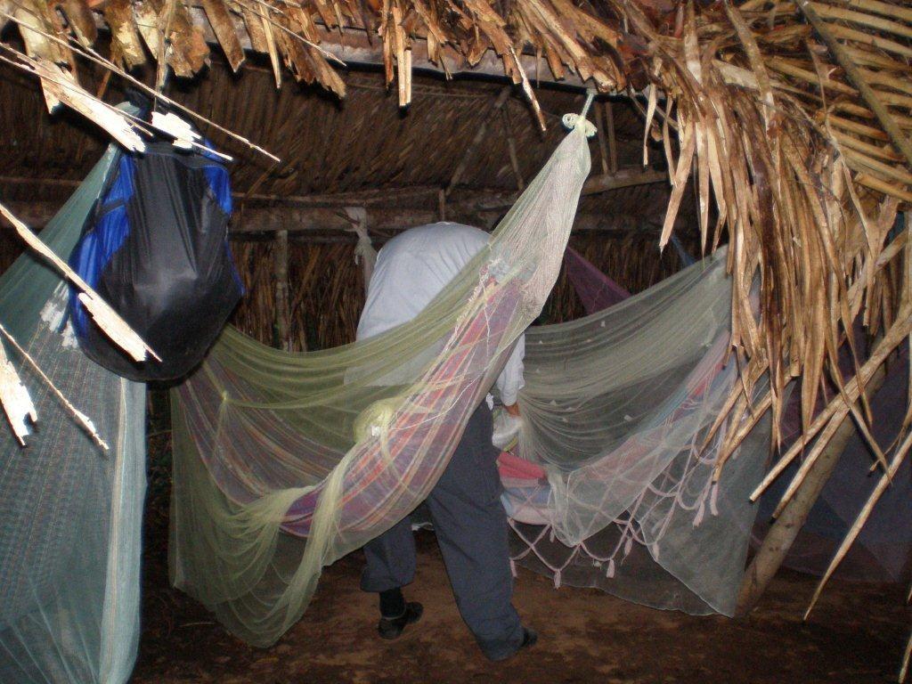 Nachtcamp im Dschungel