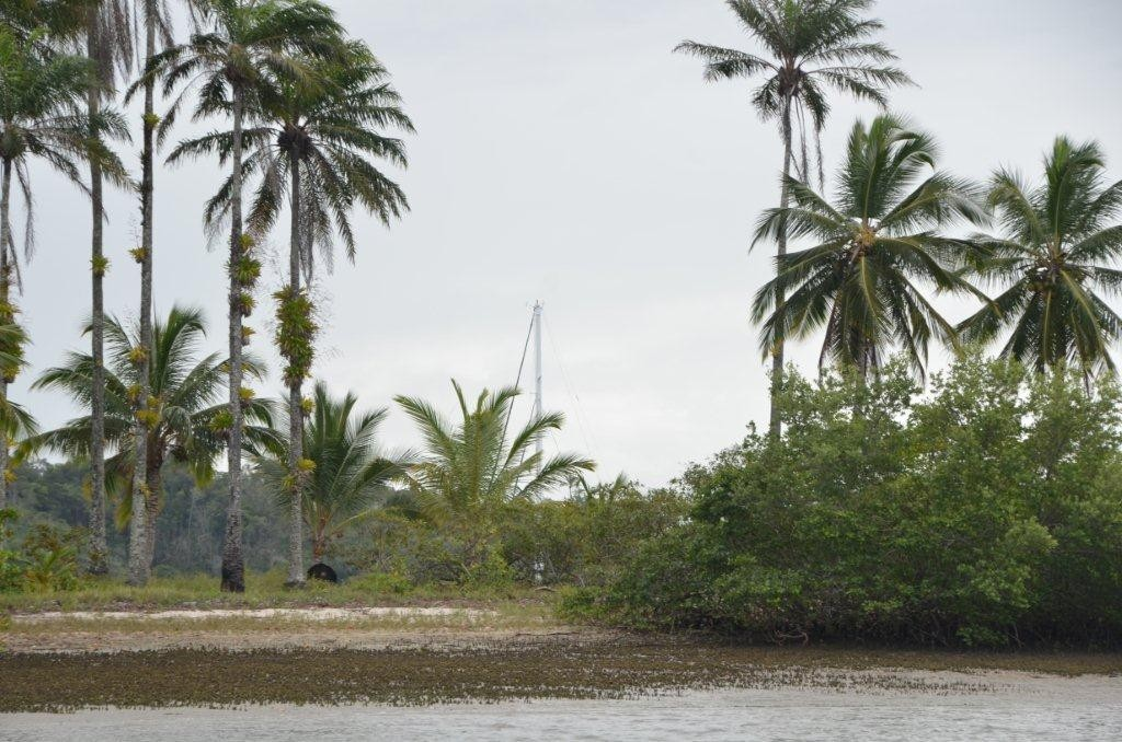 Meerlust unter Palmen ...