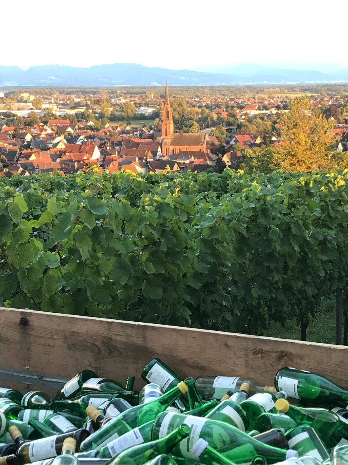 Weinfest Hungerberg 2019 Köndringen Impressionen 14