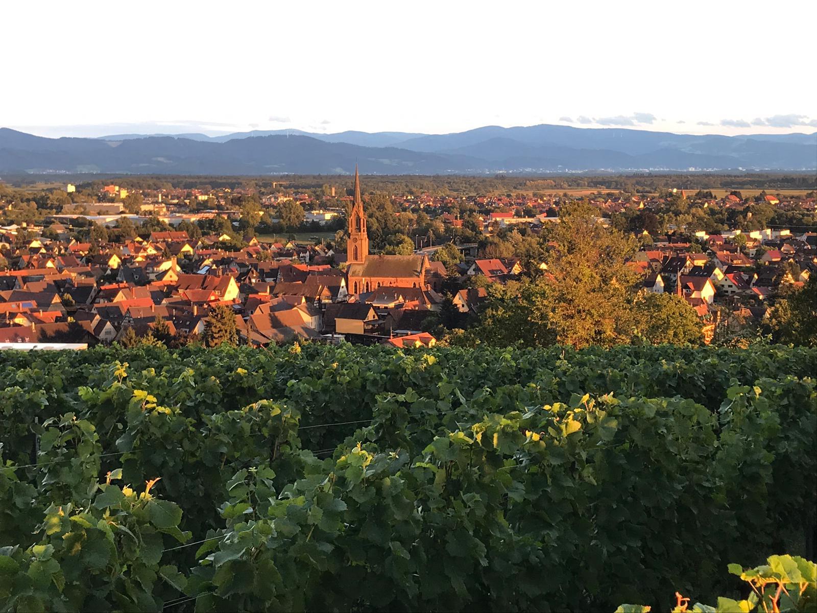 Weinfest Hungerberg 2019 Köndringen Impressionen 15
