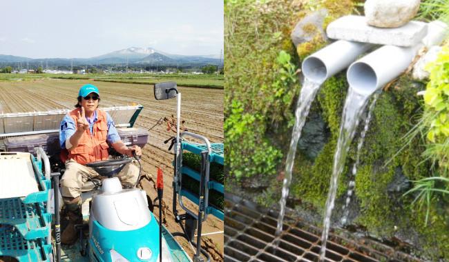 八甲田山系の雪解け水、青森の冷涼な気候の賜物。 八甲田山麓の豊富な水系、恵まれた自然の中でストレスなく育った健康な稲です。