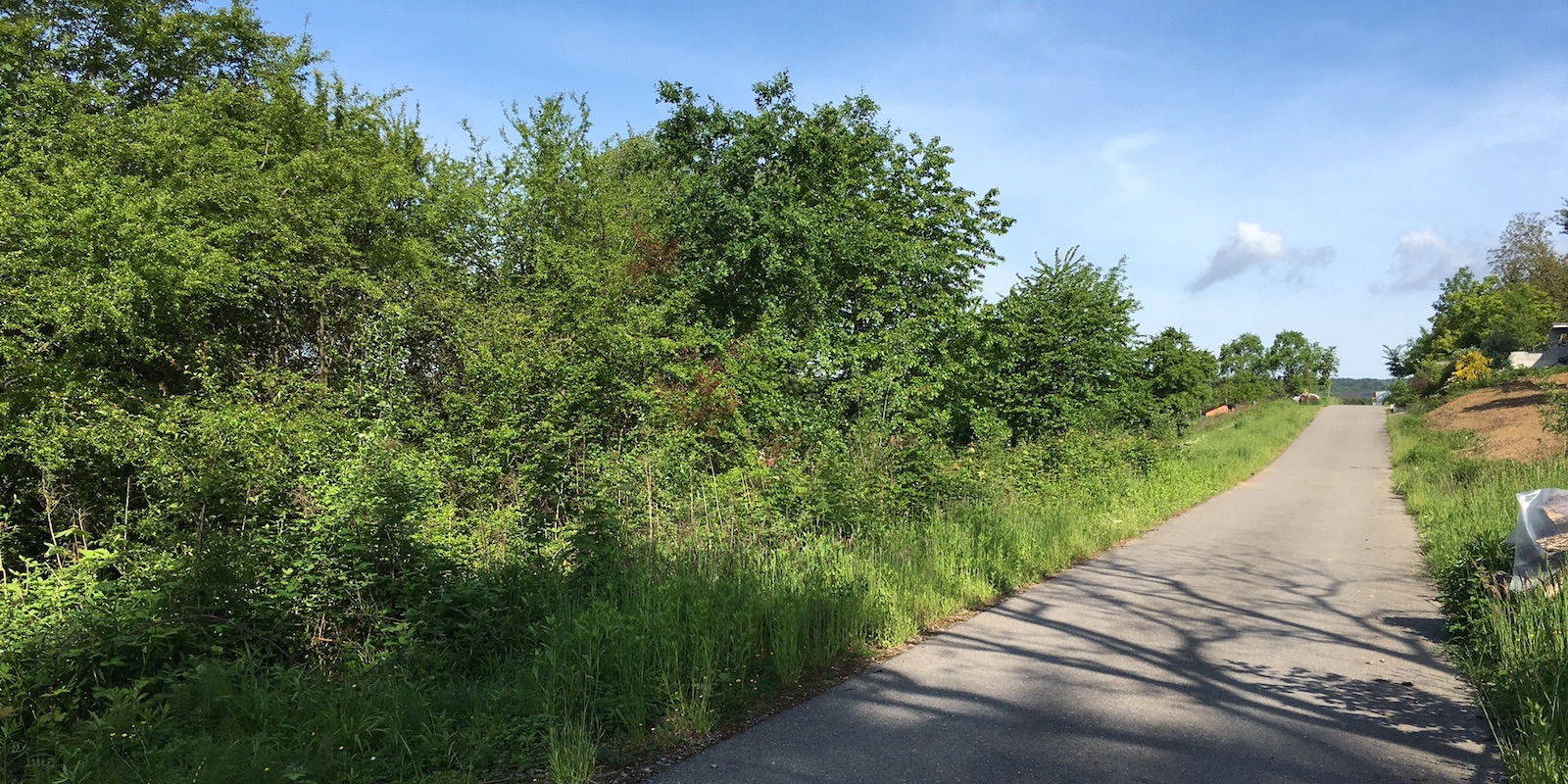 Straße entlang Richtung Waldhilsbach