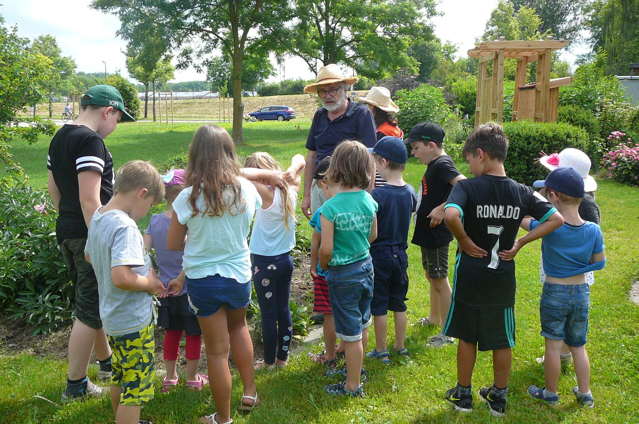 Exkursion mit einem Kräuterexperten, Juni 2018